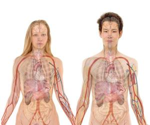 Herzinsuffizienz: Unterscheiden sich Symptome bei Frauen und Männern?