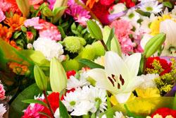 Köstliches mit Blüten