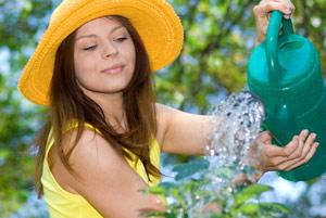 Urban Gardening: Gemeinschaftsgärten mit sozialer Dimension
