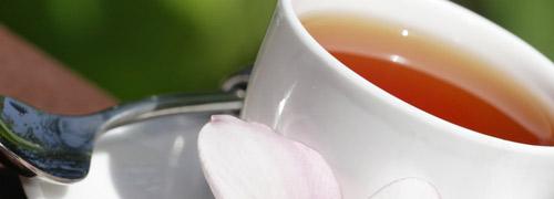 Welcher Tee bei Schlafstörung?