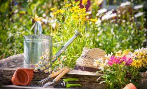 4 Tipps zur schönen Gartengestaltung