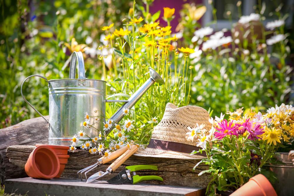 Nachhaltigkeit reicht bis in den Garten